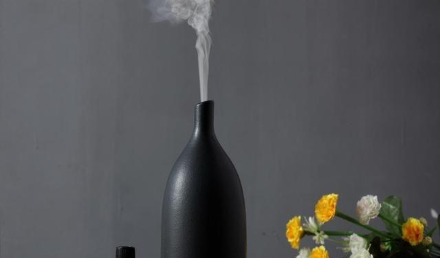 天气干燥 加湿器使用不当反而会对身体造成负担