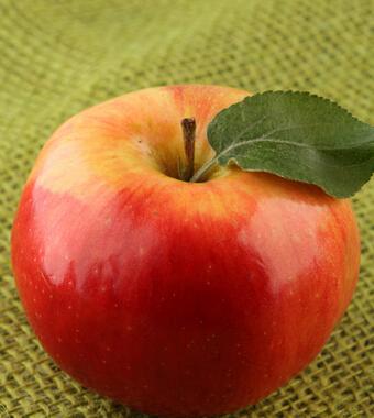 夏季饮食养生小常识 水果要分清寒热再进食