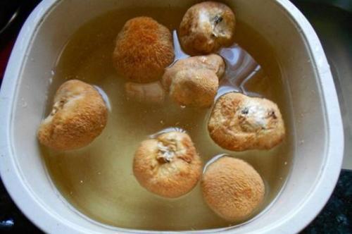 猴头菇怎么吃,先用温水把它泡至回软!