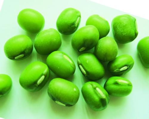 四季豆的营养价值与功效,很多人还不了解