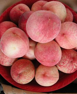 桃子吃多了会怎么样 夏日吃桃子9个注意事项